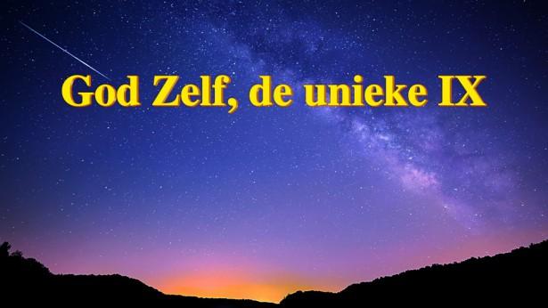 God Zelf, de unieke IX