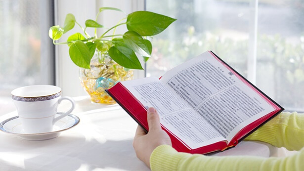 6. Hoe moet men de Bijbel benaderen en gebruiken op een manier die strookt met Gods wil? Wat is de inherente waarde van de Bijbel?